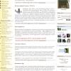 Дизайн главной страницы сайта приюта для бездомных животных ПИФ.