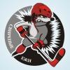 Логотип для любительской хоккейной команды.